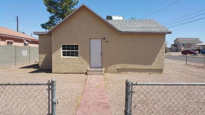 Phoenix Single Family Home For Sale: 4817 S 10th Street