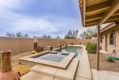Carefree AZ Single Family Home For Sale: $610,000
