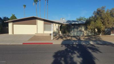 Tempe Single Family Home For Sale: 2201 S River Drive