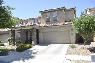 Gilbert Single Family Home For Sale: 4066 E Milky Way