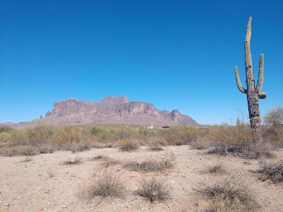 Apache Junction Residential Lots & Land For Sale: 3686 N Rain Cloud Drive