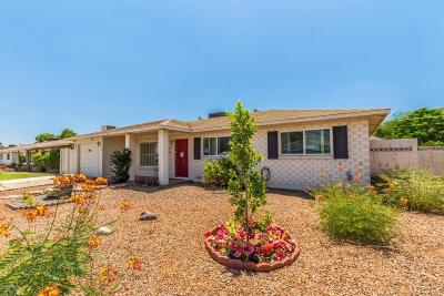 Scottsdale Single Family Home For Sale: 3614 N 80th Place
