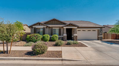 Laveen Single Family Home For Sale: 5531 W Milada Drive
