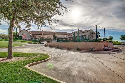 Superstition Mountain Residential Lots & Land For Sale: 9353 E Skyline Trail