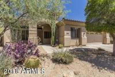 Single Family Home For Sale: 5004 E Desert Vista Trail