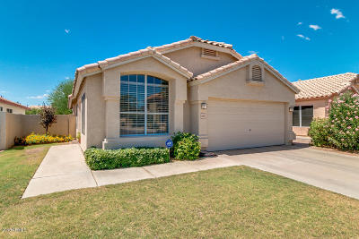 Chandler Single Family Home For Sale: 1095 W Macaw Drive