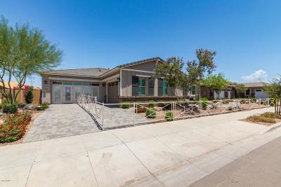 Queen Creek Single Family Home For Sale: 23060 E Parkside Drive