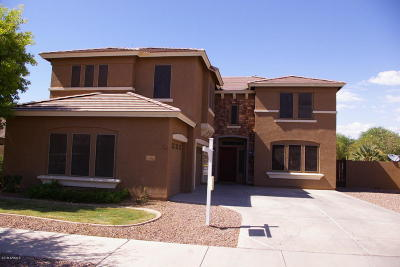 Queen Creek Single Family Home For Sale: 18562 E Druids Glen Road