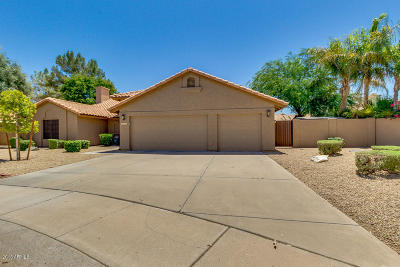 Tempe Single Family Home For Sale: 9675 S Dromedary Drive