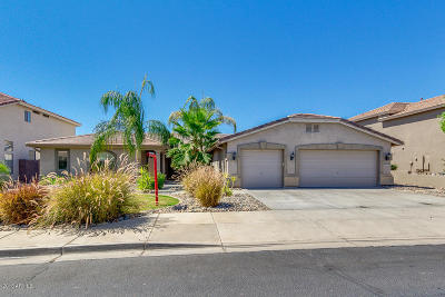 Litchfield Park Single Family Home For Sale: 13521 W Medlock Drive