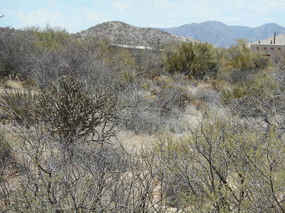 Scottsdale Residential Lots & Land For Sale: 13906 E Villa Cassandra Drive