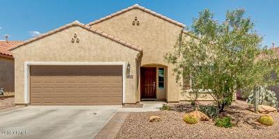 Florence Single Family Home For Sale: 2993 N Princeton Drive