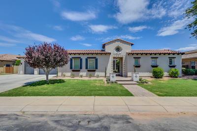Single Family Home For Sale: 5431 S San Sebastian Place