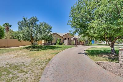 Queen Creek Single Family Home For Sale: 19911 E Camina Plata