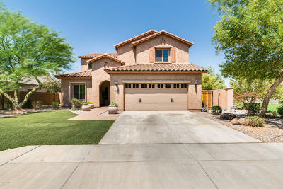 Mesa Single Family Home For Sale: 4408 S Dante