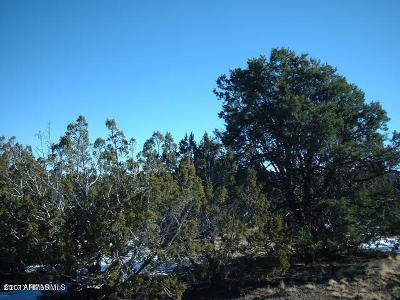 Coconino County, Yavapai County Residential Lots & Land For Sale: Lot 770 Younger Trail
