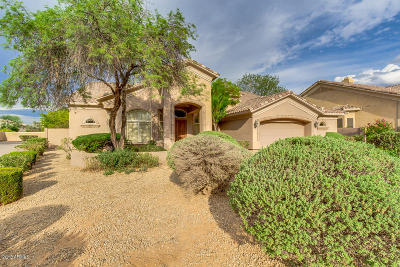 Chandler Single Family Home For Sale: 1081 N Brandon Drive