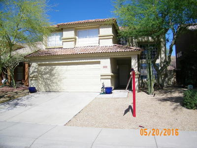 Cave Creek Single Family Home For Sale: 31223 N 43rd Street