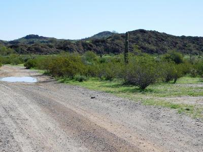 Surprise Residential Lots & Land For Sale: Xxxxx W Oberlin Way