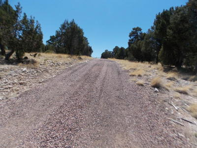 Heber Residential Lots & Land For Sale: 3370 Whisper Lane