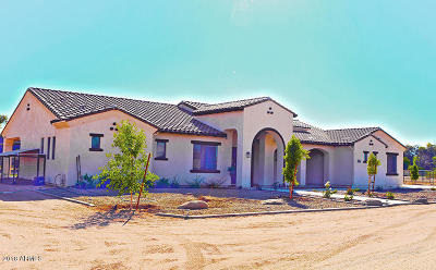 Queen Creek Single Family Home For Sale: 26712 S Power Road