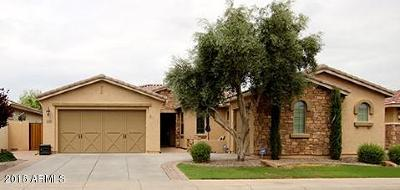 Gilbert Single Family Home For Sale: 6584 S Bridal Vail Drive