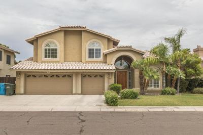 Scottsdale Single Family Home For Sale: 6826 E Gelding Drive