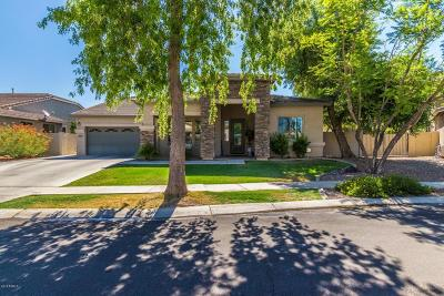 Gilbert Single Family Home For Sale: 2969 S Martingale Road