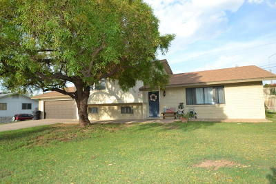 Mesa Single Family Home For Sale: 1401 N Bel Air Drive
