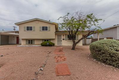 Tempe Single Family Home For Sale: 520 E Taylor Street