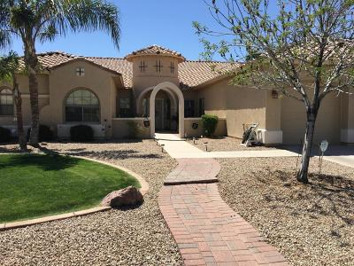 Litchfield Park Single Family Home For Sale: 5408 N Pajaro Court