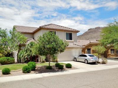 Phoenix AZ Single Family Home For Sale: $345,500