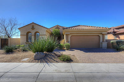 Phoenix Single Family Home For Sale: 3827 E Morning Dove Trail