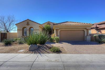 Phoenix Single Family Home For Sale: 3827 E Morning Dove Trail