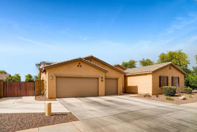Laveen Single Family Home For Sale: 5518 W Kowalsky Lane