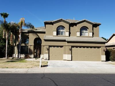 Chandler Single Family Home For Sale: 810 S Crosscreek Place