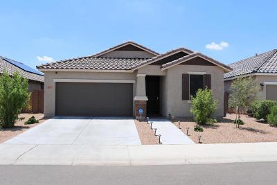 Peoria Single Family Home For Sale: 12055 W Desert Sun Lane