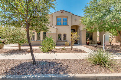 Queen Creek Single Family Home For Sale: 18653 E Caledonia Drive