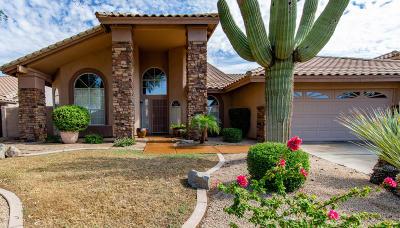 Scottsdale Single Family Home For Sale: 8900 E Palm Tree Drive