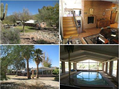 Paradise Valley Single Family Home For Sale: 7121 N Quartz Mountain Road