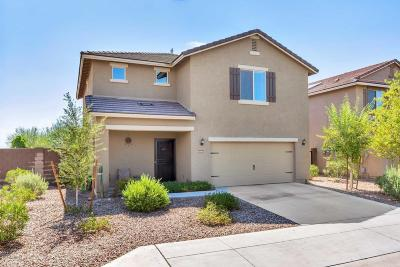 Buckeye Single Family Home For Sale: 4941 S 243rd Drive