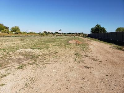 Waddell Residential Lots & Land For Sale: Olive & 172nd Lane