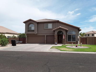 San Tan Valley Single Family Home For Sale: 493 E Stirrup Lane