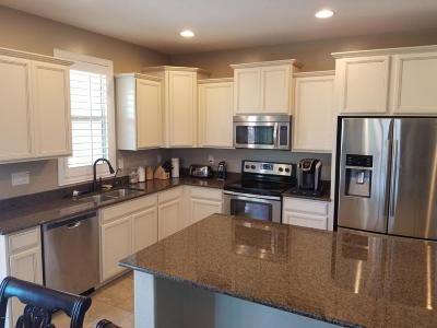 Buckeye Single Family Home For Sale: 22555 W Shadow Drive