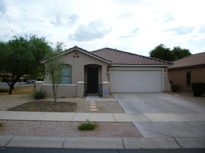Queen Creek Single Family Home For Sale: 21899 E Puesta Del Sol