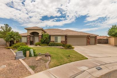 San Tan Valley Single Family Home For Sale: 3861 E Whitehall Drive