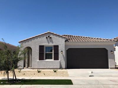 Phoenix Single Family Home For Sale: 2815 E Sunland Avenue