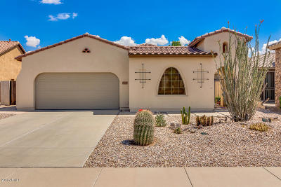 Maricopa Single Family Home For Sale: 36085 W Catalan Street