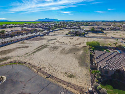 Litchfield Park Residential Lots & Land For Sale: 18123 W Palo Verde Court