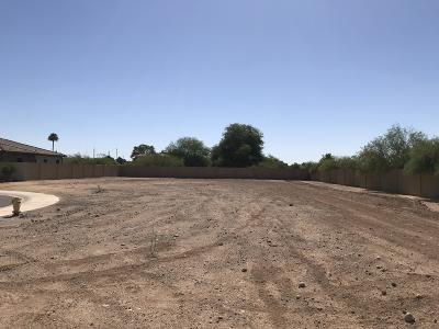 Peoria Residential Lots & Land For Sale: 13801 N 74th Avenue